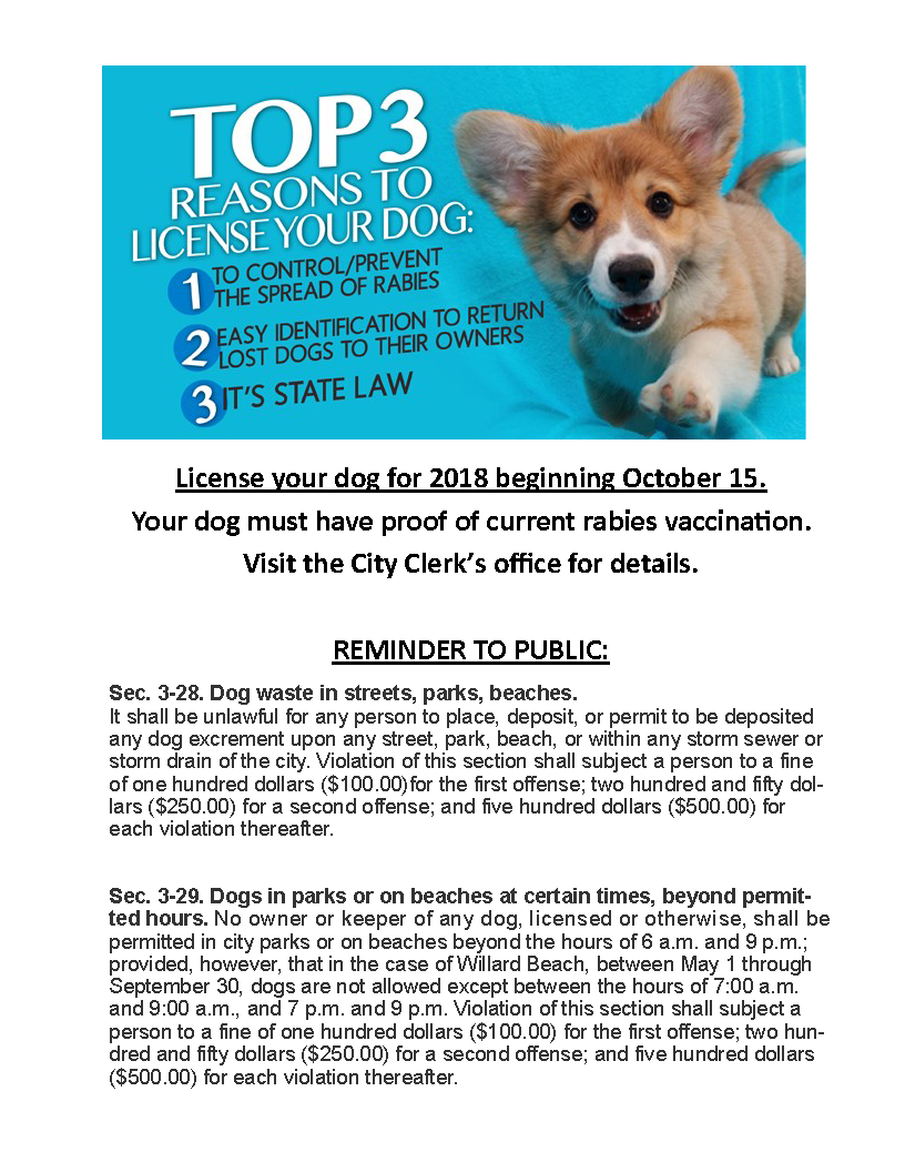 City of south portland dog licenses you may now license your dog online xflitez Images