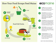 How your food scraps feed Maine
